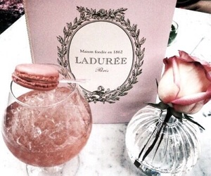 pink, drink, and laduree image