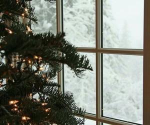 beautiful, lights, and snow image