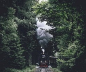 train, travel, and nature image