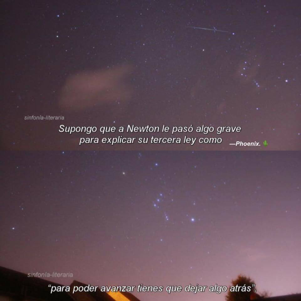 Image About Newton In Frases De Lo Que Sea By Nyancha