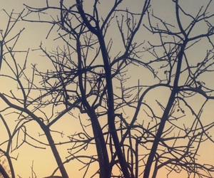 Image by Karyna