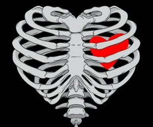 heart, pink, and bones image