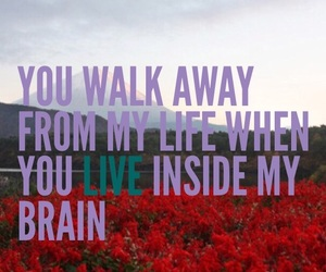 flowers, red, and front porch step image