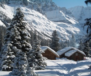 Houses, mountains, and trees image