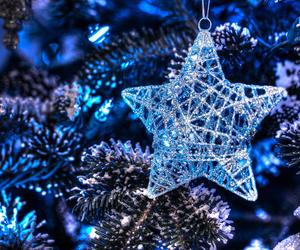 blue, christmas, and star image