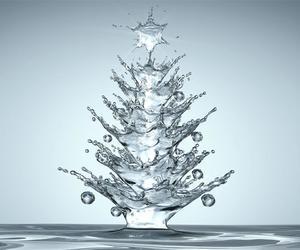 christmas, water, and tree image