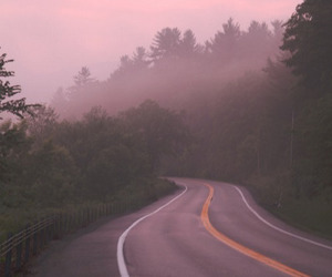 road, nature, and photography image