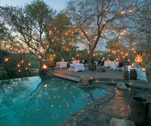 pool, light, and tree image