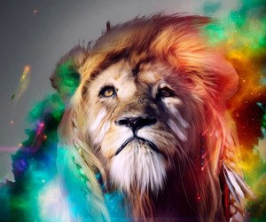 lion, animal, and colors image