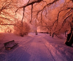 cold, photography, and pretty image