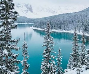 winter, snow, and landscape image