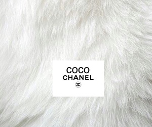 chanel, channel, and coco image