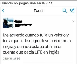 divertido, funny, and life image