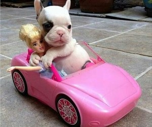 barbie, dog, and car image