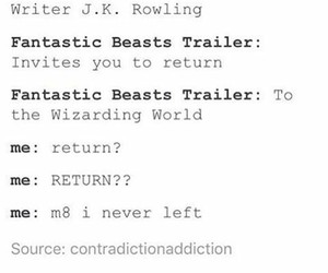 post, tumblr, and fantastic beasts image