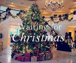 christmas, christmas tree, and life image