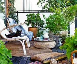 balcony, cat, and home image