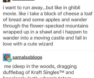 funny, ghibli, and lol image