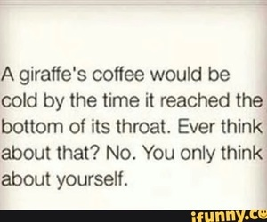 coffee, cold, and funny image