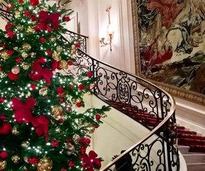 beautiful and holiday image