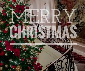celebrate, christmas, and family image
