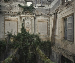 abandoned, nature, and art image