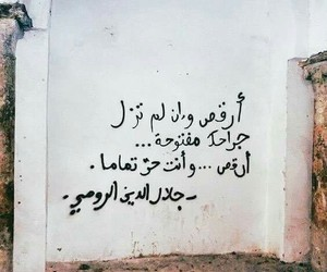 جلال الدين الرومي image