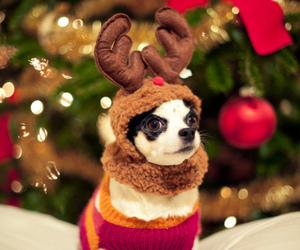 christmas, diy, and inspiration image