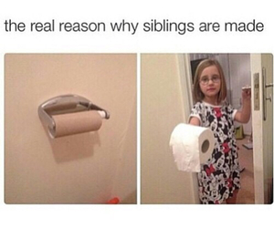 funny, lol, and siblings image