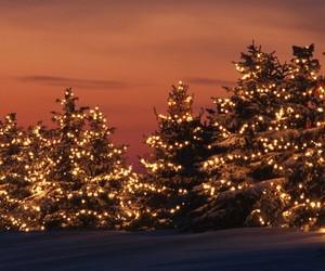 lights, december, and sunset image