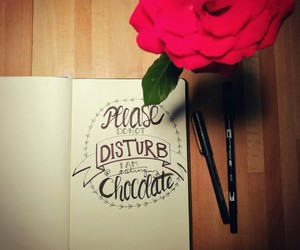 handlettering, lettering, and rose image