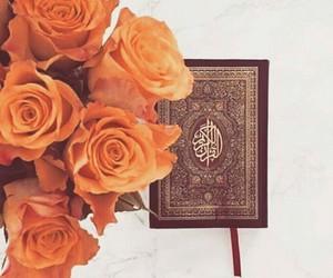 arab, book, and iran image