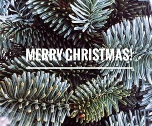 christmas, christmas tree, and easel image