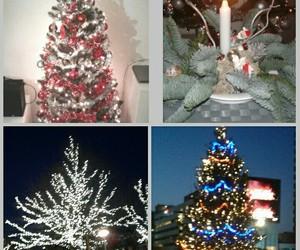 Christmas time, christmas tree, and decoration image