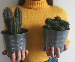 cactus, yellow, and girl image