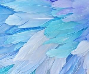 pattern and plumas image