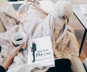 beauty, cozy, and fashion image