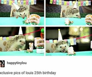 happy birthday, tumblr, and funny+ image