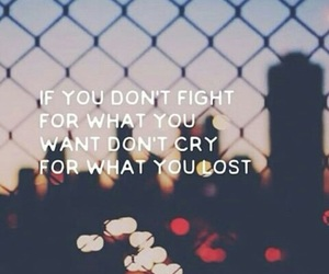 fight and quotes image
