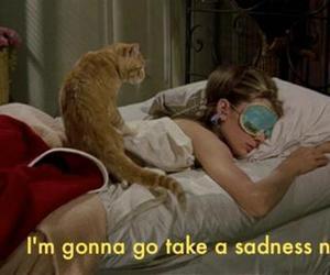 cat, nap, and sadness image