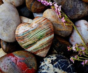 stone, heart, and flowers image
