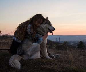 bohemian, dog, and free image