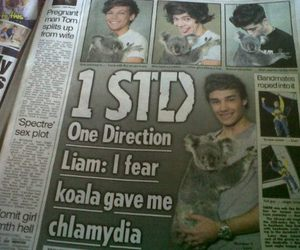 one direction, Koala, and 1d image