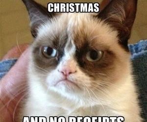 funny, cat, and grumpy cat image