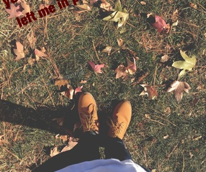 fall, quote, and leaves image