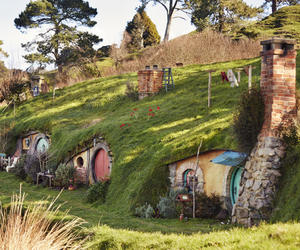 beautiful, nz, and the hobbit image