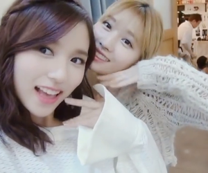 momo, twice, and mina image