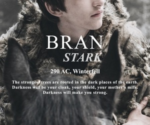 stark, bran, and winter is coming image