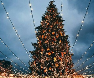 beautiful, christmas tree, and garland image