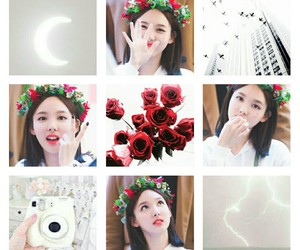 flower, moodboard, and twice image